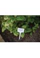 Tabliczka do roślin 15x5,5x3,5cm