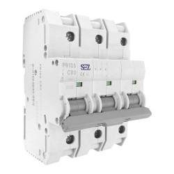 C80A 3P 10kA Wyłącznik nadprądowy bezpiecznik Typ S eska PR123 SEZ 6557
